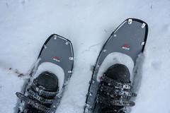 MSR Lightning Ascent Snowshoes (Tony Webster) Tags: jaycookestatepark msr msrlightningascent msrlightningascentsnowshoes minnesota boots showshoe snow snowshoeing snowshoes winter winterboots esko unitedstates us
