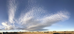 Late Day Cloud Patch (northern_nights) Tags: altocumulus lenticular clouds cheyenne wyoming