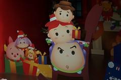 DSC00664- Christmas Dream for Kids (oliveplum) Tags: poinsettiawishes2018 leica60f28macro decoration sony christmas singapore gardensbythebay flowerdome