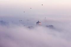 VERSO SERA... (lupus alberto) Tags: bergamo cittàalta nebbia tramonto uccelli armonia bellezza volo fiaba