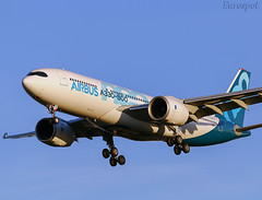 F-WTTO Airbus A330 Neo (@Eurospot) Tags: fwtto airbus a330 neo a330800 1888 toulouse blagnac