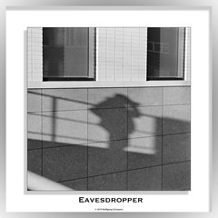 Eavesdropper (wolfgang.schroyens) Tags: shadow wall square bw hc110h tmax400 af28105d nikon