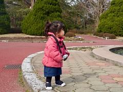 2019-02-22 14-06-05 (minority318) Tags: daigocho kyotofu 日本 jp