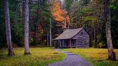 Channeling My Inner Bob Ross (Christopher W Gilbert) Tags: landscape landscapes fujifilm fuji fall fallcolors gfx50s cabin trees solitude relaxing outdoors