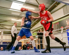 ABA-1943184.jpg (bridgebuilder) Tags: west aba barton boxing club eccles sport north amateur bps sig counties