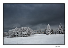 L'hiver dans les Vosges (Rémi Marchand) Tags: paysage landscape neige blanc hiver winter canoneos5dmarkiii vosges arbre ciel givre france grandest hohneck