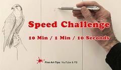 Speed Challenge - 10 Min / 1 Min / 10 Seconds (fineart-tips) Tags: art drawing finearttips challenge falcon sketch tutorial artistleonardo leonardopereznieto patreon tutto3