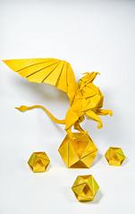 Griffon 2018 - Designed by Nguyễn Tuấn Tài (Nguyễn Tuấn Tài) Tags: