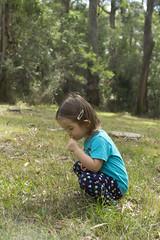 kissing flowers (louisa_catlover) Tags: karwarra garden karwarraaustraliannativebotanicgarden dandenongs outdoor nature portrait child family toddler daughter tabby tabitha