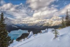 Snowy Peyto Lake (Philip Kuntz) Tags: peytolake bowsummit snow icefieldsparkway canadianrockies banff banffnationalpark alberta canada