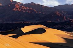 Snaking Sand Dunes at Sunrise (TierraCosmos) Tags: dunes sand sanddunes mesquiteflat deathvalley deathvalleynationalpark sunrise sshape landscape sandscape mountains shadows california