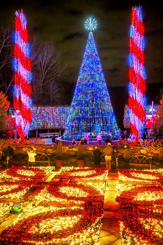 Winter Lights at The North Carolina Arboretum (Asheville, North