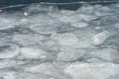 quabbinreservoir2019-53 (gtxjimmy) Tags: sonya7ii sony alpha a7ii mirrorless quabbinreservoir winter newengland ware belchertown massachusetts watersupply
