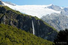 20190207-20-Waterfall from Rob Roy Glacier Track (Roger T Wong) Tags: 2019 nz newzealand robroyglacier rogertwong sel24105g sony24105 sonya7iii sonyalpha7iii sonyfe24105mmf4goss sonyilce7m3 southisland westmatukitukivalley bushwalk glacier hike landscape outdoors tramp trek walk waterfall