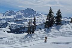 DSCF3741 (Laurent Lebois ©) Tags: laurentlebois france nature montagne mountain montana alpes alps alpen paysage landscape пейзаж paisaje savoie beaufortain pierramenta arèchesbeaufort