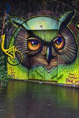 Garage à vélo (Edgard.V) Tags: paris parigi streetart urban art urbano arte callejero mural hibou owl gufo coruja