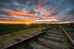 Derailed (Rich Lonardo Photo) Tags: brentwood california train tracks sunrise sony a7riii red beautiful sky travel explore landscape photography