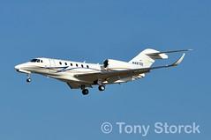 N487SL (bwi2muc) Tags: bwi airport airplane aircraft plane flying aviation spotting spotter cessna citation n487sl citationx bwiairport bwimarshall baltimorewashingtoninternationalairport cessna750