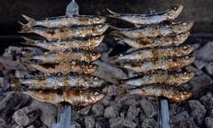 ESPETOS DE SARDINAS (marthinotf) Tags: espetos sardinas marmediterraneo costadelsol malaga torremolinos benalmadena sardinasalabrasa fuego sal airelibre