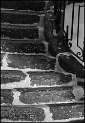 Saint Biez en Belin (Sarthe) (gondardphilippe) Tags: saintbiezenbelin sarthe maine paysdelaloire noiretblanc noir nb blanc blackandwhite bw black white architecture escalier marches bâtiment campagne extérieur graphique monochrome outdoor ombre old patrimoine quiet rural texture ruralité vieux zen