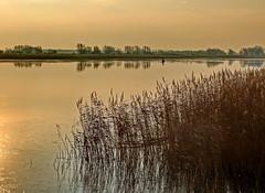 Morgensgtimmung (Wunderlich, Olga) Tags: fischer boot schilf insel mecklenburgvorpommern rügen naturaufnahme wiek spiegelung