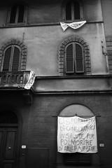 L1045778 (Daniele Pisani) Tags: lenzuola signa protesta smog traffico code file lastra nebbia fuomo fumo strada