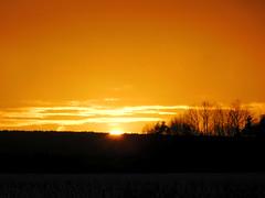....und da geht sie auch schon wieder unter..... (elisabeth.mcghee) Tags: sonnenuntergang sunset abendhimmel landschaft landscape winter wintersonne winterlandschaft schneelandschaft snow schnee himmel sky clouds wolken orange bäume trees wald forest