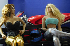 53 (Cremdon) Tags: 16scale actionfigures ducati 998
