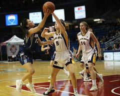 NBIAA 2019 AAA GIRLS FHS Black Kats VS LHHS Lions 8611 10x8 (DaveyMacG) Tags: saintjohn newbrunswick canada nbiaafinal122019 interschoastic basketball girlsaaachampionship frederictonhighblackkats leohayeslions canon6d