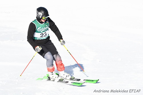 Alpine Races I & II Feb 2019_05