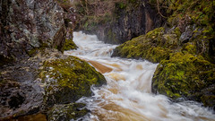 Passing through... (Lee Harris Photography) Tags: water river flowing waterfall rugged rocks moss foliage nature longexposure light outdoor landscape landscapes magical serene beautiful ingleton yorkshire uk