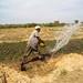Farmer irrigating vegetables in Mali