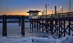 Kanaka Landing Harbour  - Maple Ridge (Christie : Colour & Light Collection) Tags: fraserriver frosty snow ice icy frozenriver sundown sunset light lowlight silhouette evening bluehour skylight dusk wharf kanakalandingharbour marina harbour canadageese wildlife waterfowl pier dock horizon night mapleridge haney bc britishcolumbia nikkor nikon glow