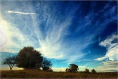 Himmelblau (linke64) Tags: thüringen deutschland germany himmel wolken gegenlicht natur landschaft bäume baum wiese gras erde blau himmelblau herbst rahmen