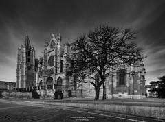 Plaza de la Regla (Paco Fuentes Vicario) Tags: león gótico catedral españa arquitectura led bn bw byn blancoynegro