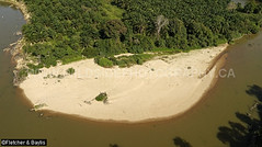 41908 Sandy point bars provide nesting habitat for Southern River Terrapins (Batagur affinis), Terengganu, Malaysia. IUCN=Critically Endangered. (K Fletcher & D Baylis) Tags: panorama habitat nestinghabitat geomorphology fluvialgeomorphology river pointbar sand animal wildlife fauna reptile turtle testudines geoemydidae riverterrapin tuntung southernriverterrapin batagur bataguraffinis batagurbaska criticallyendangered nest nesting conservation turtleconservationsociety terengganu malaysia asia february2019
