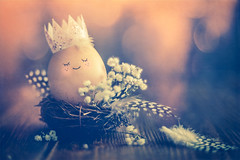 Ready for Easter (Ro Cafe) Tags: easter lookingcloseonfriday nest pentacon sonya7iii stilllife closeup cute eggs huevos naturallight vintagelens textured