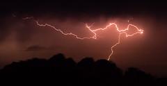 Severe Thunderstorm (Markus Branse) Tags: tags hinzufügen nightstorm gewitter darwin nooamah northern territory notthern australia austalien austral australie aussie oz thunder thunderstorm storm lightning blitze bolt unwetter wetter weer meteo weather wolken cloud clouds wolke outback hell nacht langzeitbelichtung nite night nuit himmel tier gras verschwommen sonnenuntergang