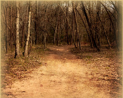 Familiar Road (Chris Ehrlich Photography) Tags: cde photography nature road story art landscape nc yadkinville nikon ngc