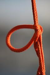 Hang on (ivanabela) Tags: knots depthoffield bokeh rope