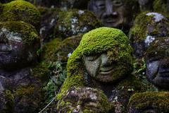 Couvert de mousse (stephanexposeinjapan) Tags: japon japan asia asie stephanexpose canon 600d 1635mm arashiyama kyoto nenbutsuji temple statues rakugan