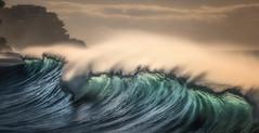 Early Riser (rosiebondi) Tags: surf ocean sunrise coast nikon wave waves sea australia