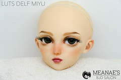 neu-1050020 (Meanae) Tags: bjd abjd luts delf miyu sd measbjdsalon commission