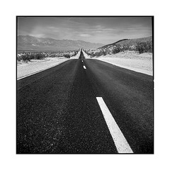 the road to nevada • somewhere, nv • 2018 (lem's) Tags: road route desert nevada usa rolleiflex