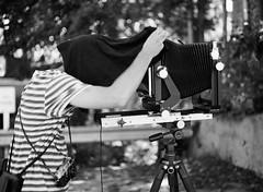 Cameron and the dark cloth (sbug) Tags: mamiya 645 mediumformat largeformat 8x10 80mmf28 monochrome film filmisnotdead portwashington