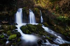 La font de L'Adou (candi...) Tags: lafontdeladou saltodeagua cascada río agua naturaleza nature piedras rocas airelibre sonya77ii sedas arboles bosque montaña