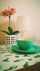 Krakow (neity27) Tags: mesa detalles desayuno krakow cracovia polonia cactus flor