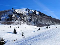 érintő / tangent (debreczeniemoke) Tags: tél winter hó snow túra hiking erdő forest fa tree hegy mountain gutin gutinhegység gutinmountains szekatura secătura olympusem5
