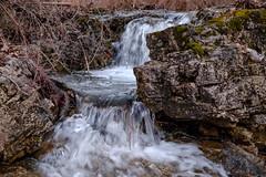 Long Creek (Gary Allman) Tags: water fujifilmxe3 backpacking gsa longcreek backpackingjanuary262019 herculesgladeswilderness