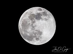 Super snow moon (John De Gruyter Photography) Tags: d4s moon nikon supermoon supersnowmoon